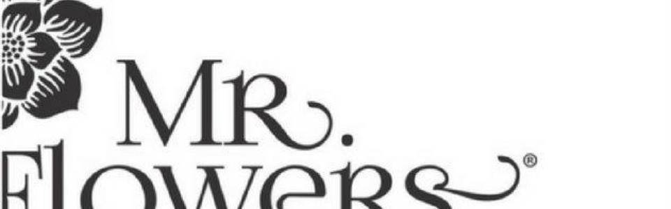 Arreglos florales mr flowers logo
