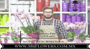 Flower deliveries for mothers day atención