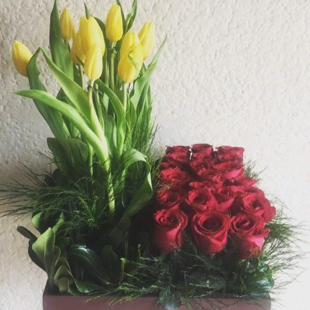 Tulipanes y Rosas Rojas