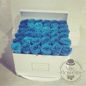 Caja con 36 Rosas Azules