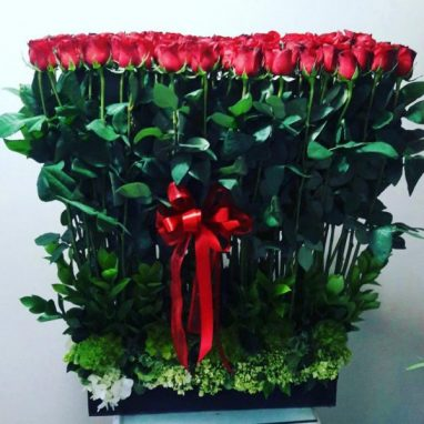 Sembrado con 100 Rosas