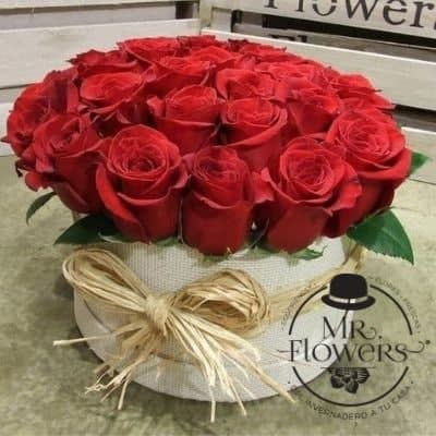 24 rosas estilo vintage