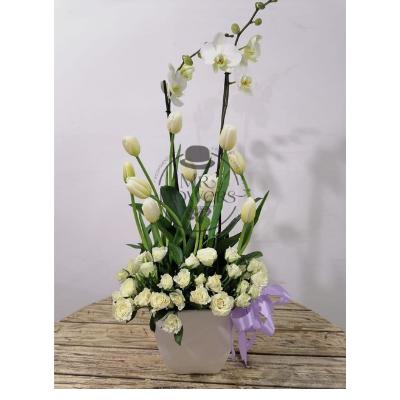 Arreglo con orquidea, tulipan y mini rosa blanca